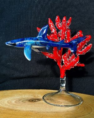 Blue shark on red coral
